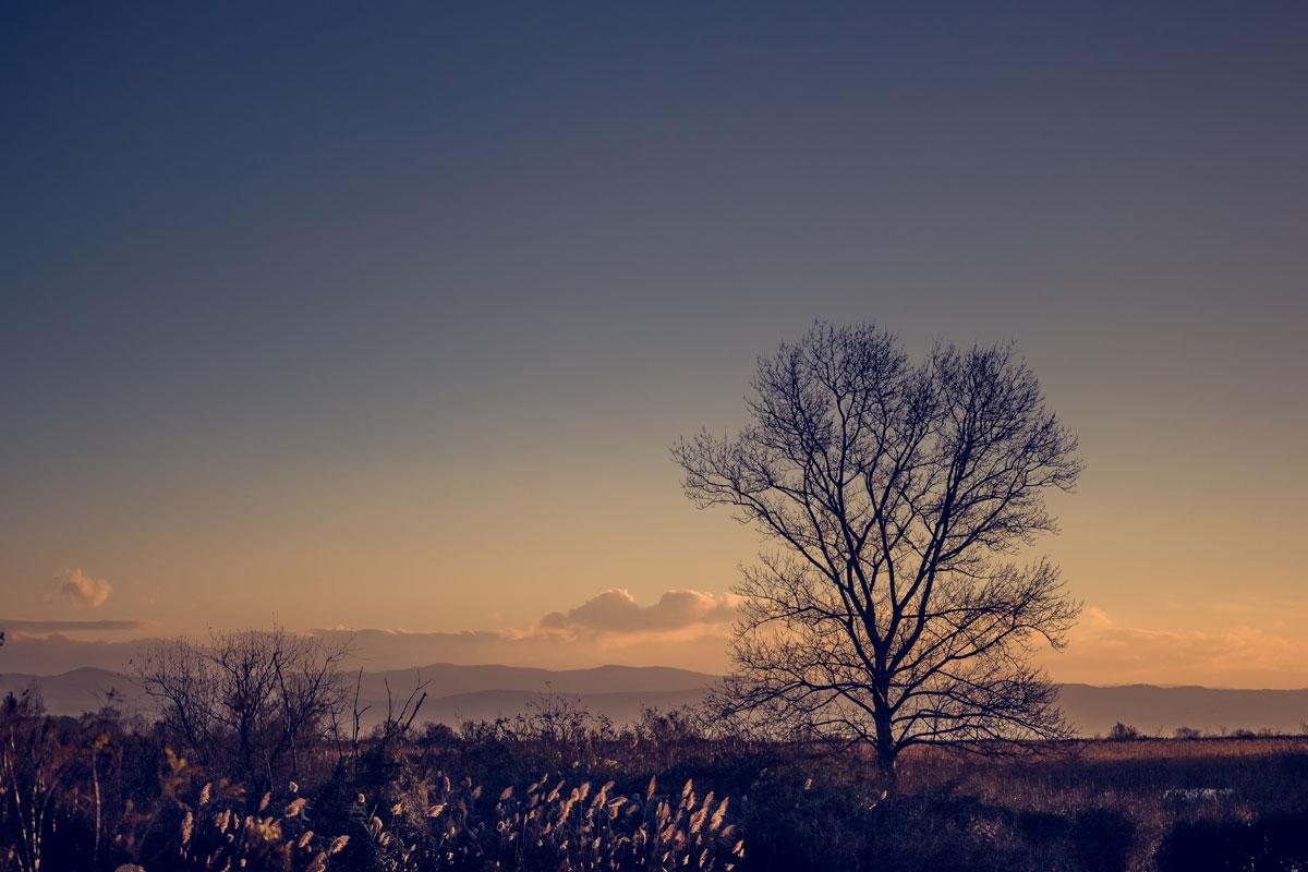 fotografo paesaggista padova